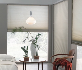 honeycomb shades in Boston space