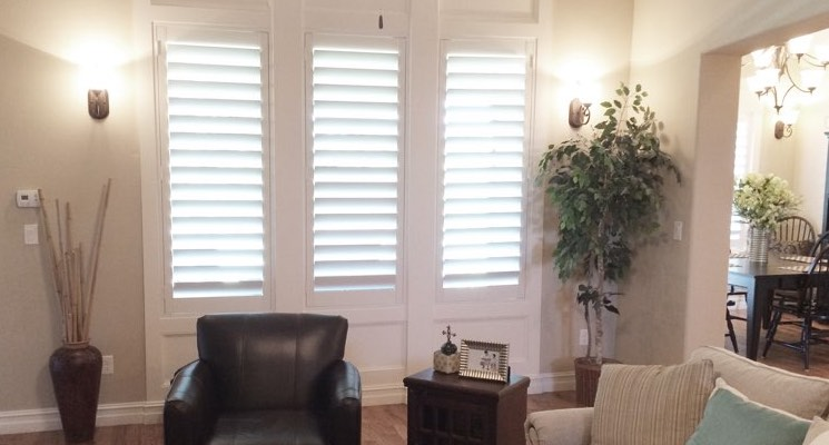 Boston living room white shutters